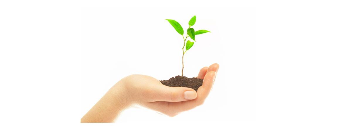 AB1. Como Implementar a Norma ISO 14001:2015
