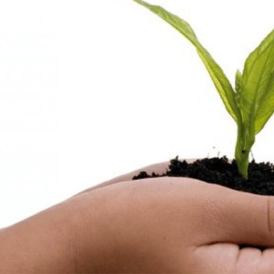 Como Implementar a Norma ISO 14001:2015