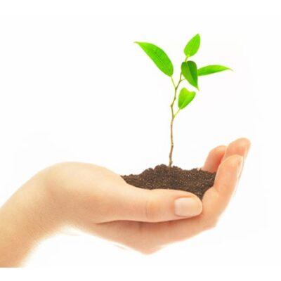 Introdução à Norma ISO 14001:2015</br>E-Learning