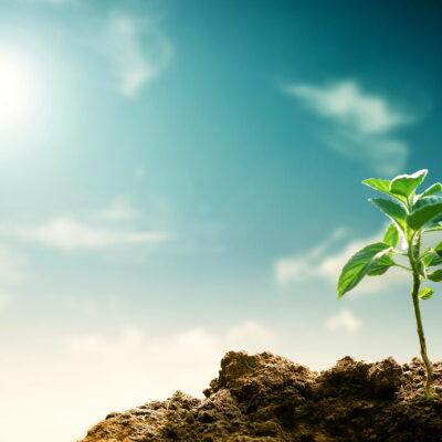 Protegido: Certificação Verde – A sustentabilidade na perspetiva do Dono de Obra (Maio 2021)